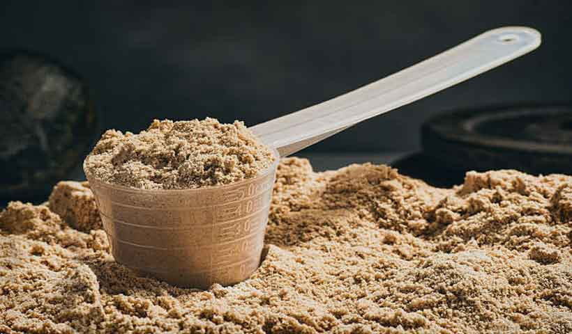 news-site-Whey-protein